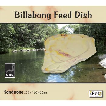 ULTIMATE REPTILE SUPPLIERS BILLABONG WATER BOWL SANDSTONE XLGE
