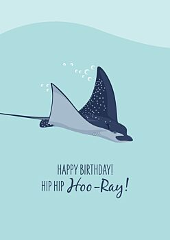 Birthday Card - Spotted Eagle Ray