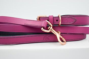 Pretty In Pink Leather Collar & Leash