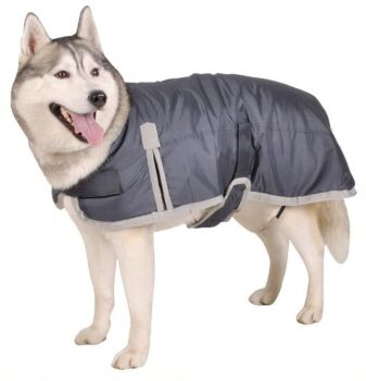 Oxford Pet Jacket - 60cm, 2 x Assorted Colours Black/Grey and Water Resistant