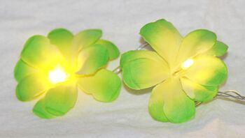 5 Sets of 20 LED Green Frangipani Flower Battery String Lights Christmas Gift Home Wedding Party Decoration Outdoor Table Garland Wreath